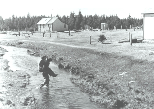 Afognak-Village-1943-rivercrossing.jpg